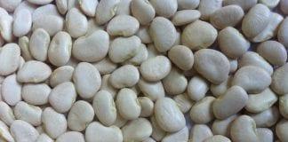 Butter-Bean