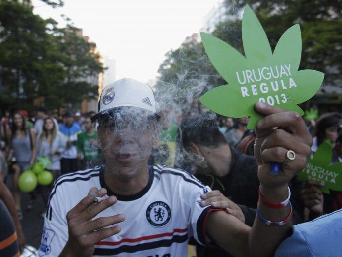uruguay marijuana 3