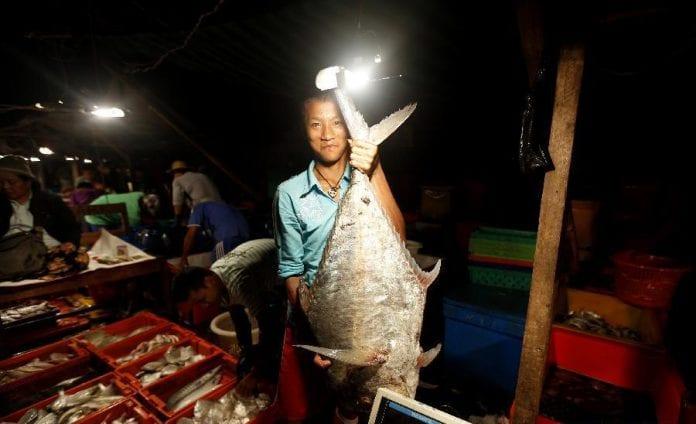 Myanmar fish 3 a