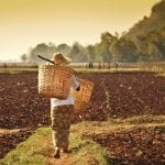 Farmer Bagan backyard travel