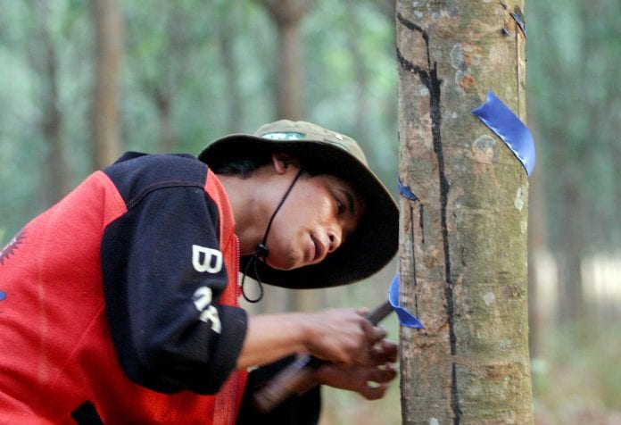 Vietnam rubber plantation reuters