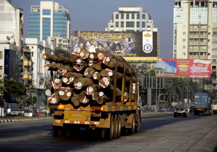 Timber Myanmar log