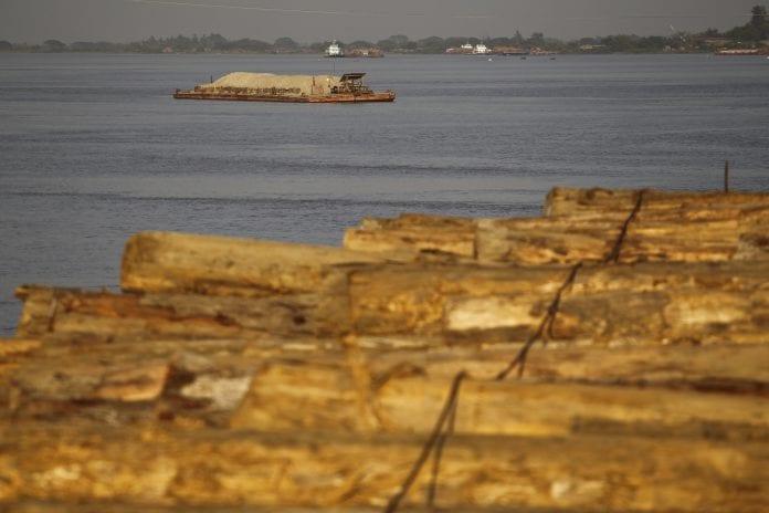 Log wood timber tree illegal saw mill (2)