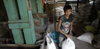 Myanmar rice mill farmer paddy agriculture