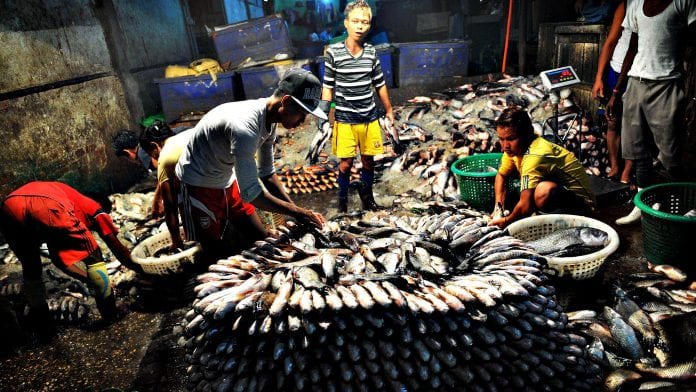 myanmar fish labor