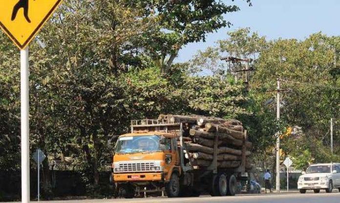 timber log wood saw truck economy trade logging