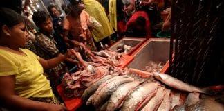 yangon fish market vendor economy exporty (1)