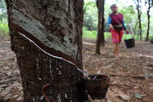 rubber vietnam