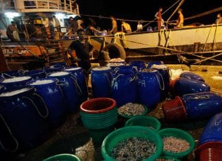 shrimp export Myanmar reuters